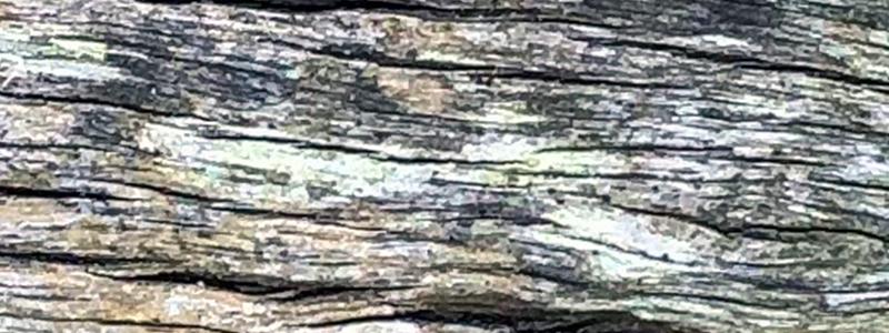grey-wooden-texture